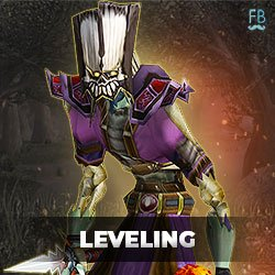 Buy classic leveling