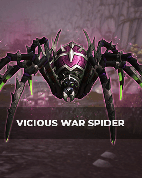 Buy Vicious War Spider