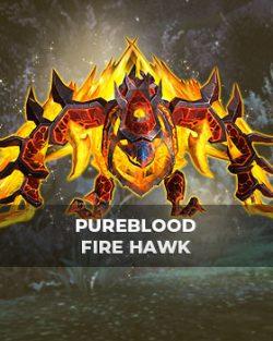 Buy Pureblood Fire Hawk